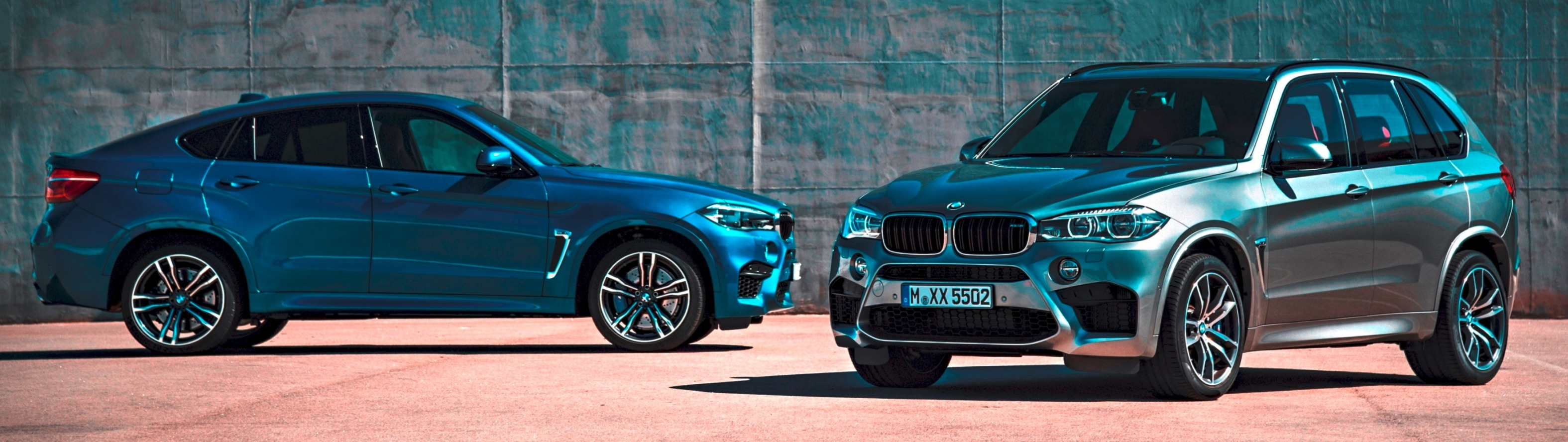 BMW X6M and X5M_Image (2)
