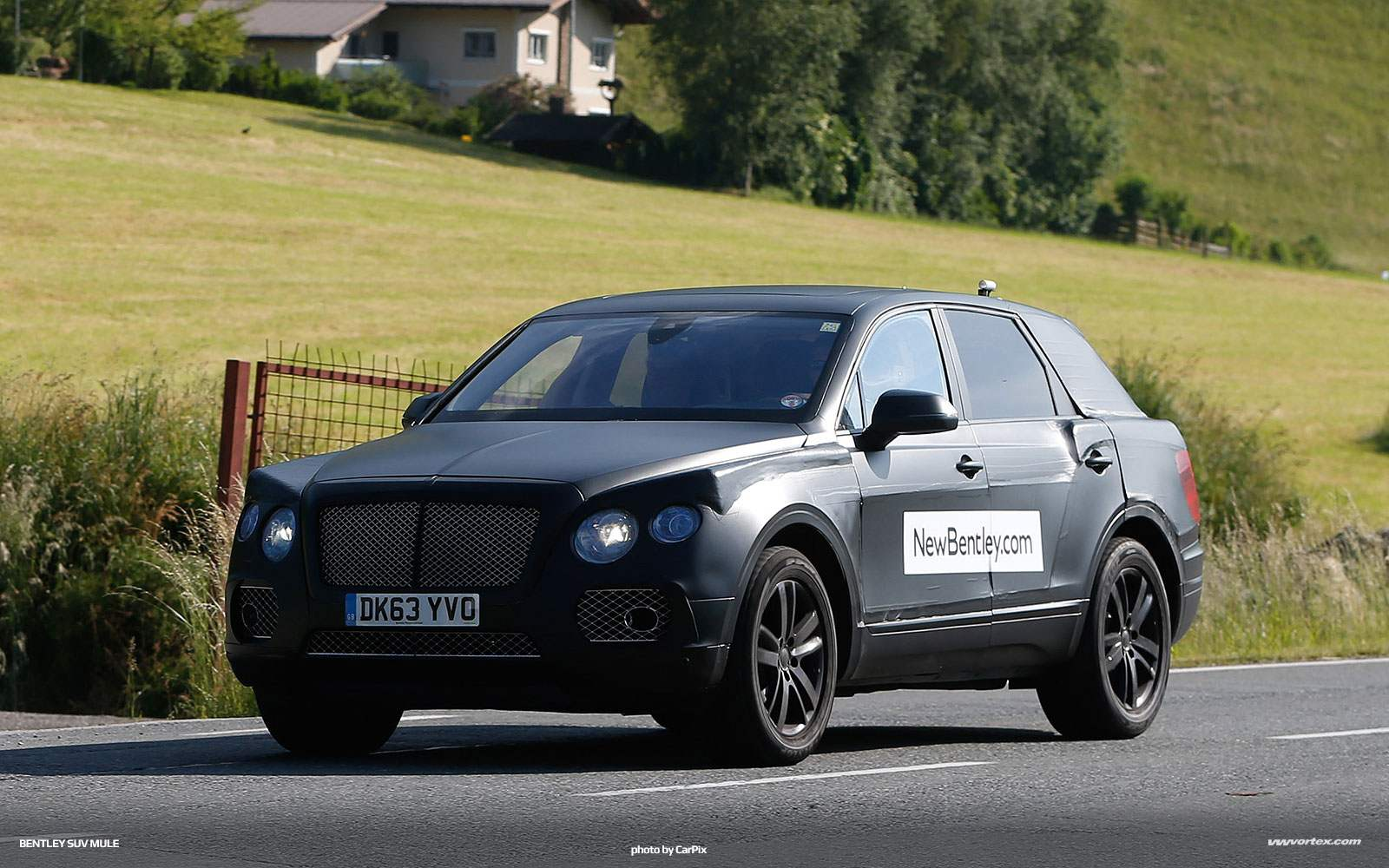 bentley-suv-mule-spy-photos-377
